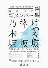 乃木坂46、欅坂46、けやき坂46の合同オーディション募集開始