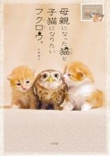 2匹の仲良しショットをまとめた写真集『母親になった猫と子猫になりたいフクロウ。』(小学館)