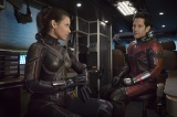 『アントマン&ワスプ』でアントマンを演じるポール・ラッド(右) (C)Marvel Studios 2018