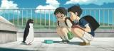 『ペンギン・ハイウェイ』は8月17日公開 (C)2018 森見登美彦・KADOKAWA/「ペンギン・ハイウェイ」製作委員会