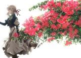 『ヴァイオレット・エヴァーガーデン』新ビジュアル(C)暁佳奈・京都アニメーション/ヴァイオレット・エヴァーガーデン製作委員会