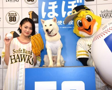 『鷹の祭典2018in東京ドーム』に登場した(左から)吉本実憂、お父さん犬、ハリーホーク (C)ORICON NewS inc.
