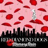 青春時代の淡い恋心を歌った新曲「Memory Rain」