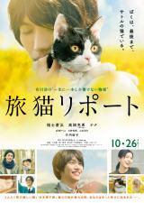 福士蒼汰、猫・ナナとじゃれあい 映画『旅猫リポート』予告公開