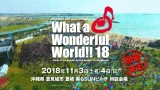 11月3日・4日の2日間沖縄で開催『MONGOL800 ga FESTIVAL What a Wonderful World!!18』