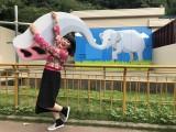 21日放送の日本テレビ系『世のため人のため!すけっと呼んだら何人くるか?』(後1:30)に出演するブルゾンちえみwithB (C)日本テレビ
