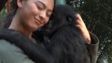 28日放送の日本テレビ系『天才!志村どうぶつ園』日本のメディア初・コンゴ共和国のボノボ保護施設へ (C)日本テレビ