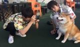 8月2日放送、NHK総合『もふもふモフモフ』夏のスペシャル拡大版より。フィルムカメラでワンコを撮影(C)NHK