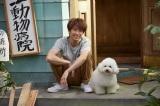 相葉雅紀主演ドラマ『僕とシッポと神楽坂』(10月スタート)にあなたのペットを登場させよう(C)テレビ朝日