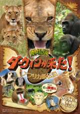 『劇場版ダーウィンが来た!アフリカ新伝説』のポスタービジュアル