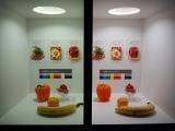 カメラのレンズを通すと一目瞭然。左が一般的な白色LEDライト、右が太陽光LED(C)ORICON NewS inc.