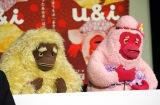 (左から)伊野尾が演じる「シッチャカ」ときゃりー演じる「メッチャカ」=Eテレ新番組『u&i』取材会 (C)ORICON NewS inc.