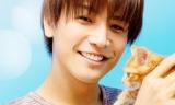 子猫と戯れる岩田剛典 (C)2018「パーフェクトワールド」製作委員会