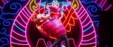 アニメ映画『スモールフット』宮野真守が演じるキャラの場面カットシーン (C)2018 WARNER BROS. ENTERTAINMENT INC. ALL RIGHTS RESERVED.