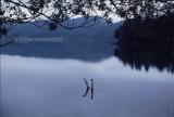 『犬神家の一族』といえばこの湖のシーン(C)1976 角川映画