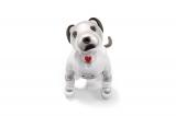 ゴーちゃん。がペットとして飼うことになった犬型ロボット・aibo