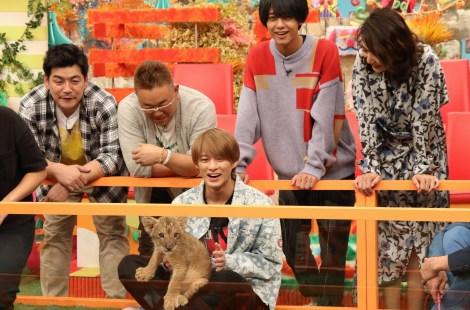 『坂上どうぶつ王国』に出演する(左から)富澤たけし、伊達みきお、平野紫耀、��橋海人、片平なぎさ(C)フジテレビ