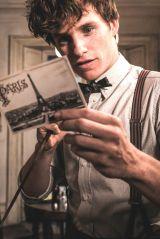 『ファンタスティック・ビーストと黒い魔法使いの誕生』ニュートの吹替は宮野真守が続投(C)2018 Warner Bros. Ent.  All Rights Reserved.Harry Potter and Fantastic Beasts Publishing Rights (C)J.K.R.