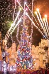 USJ「ユニバーサル・ワンダー・クリスマス」ユニバーサル・イリュージョン・ツリー