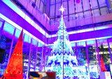 「恋人はサンタクロース」に乗せて光り輝く「Knit Tree with Yuming」=東京・丸ビル1階マルキューブ (C)ORICON NewS inc.