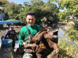 北九州市小倉のため池で番組史上最大のワニガメの捕獲に成功した的場浩司=『緊急SOS!池の水ぜんぶ抜く大作戦 3時間半SP』11月18日放送(C)テレビ東京