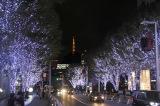 『Roppongi Hills Christmas 2018』けやき坂イルミネーション (C)ORICON NewS inc.