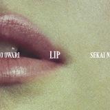 「ポップ」をいかんなく発揮した『Lip』