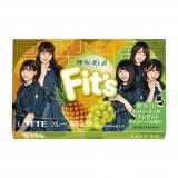 Fit's 欅坂46ガム2種類発売