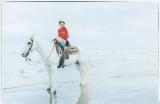 海辺で馬に乗って撮影