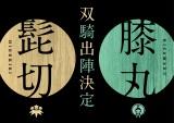 2019年7月4日から14日まで、東京・品川プリンスホテル ステラボールで「ミュージカル『刀剣乱舞』髭切膝丸 双騎出陣2019」上演、全国ライブビューイング実施(C)ミュージカル『刀剣乱舞』製作委員会