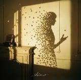 Aimerの16thシングル「I beg you/花びらたちのマーチ/Sailing」初回生産限定盤ジャケット