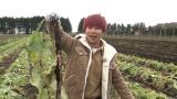 ゴボウ=テレビ東京系『ソレダメ!〜あなたの常識は非常識!?〜』1月9日放送(C)テレビ東京