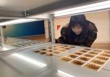 『乃木坂46 Artworks だいたいぜんぶ展』を観覧した与田祐希(C)乃木坂46LLC
