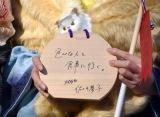 晴れ着姿で成人式を行った乃木坂46・佐々木琴子 (C)ORICON NewS inc.