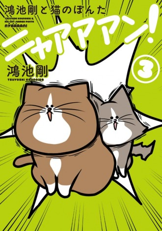 鴻池剛『鴻池剛と猫のぽんたニャアアアン! 3』(KADOKAWA/2018年12月27日発売)