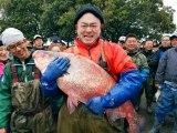 利根川流域の茨城県河内町にある不動免沼で番組史上最大級の巨大ハクレンを捕獲したあばれる君(C)テレビ東京