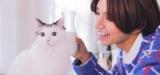 2月22日放送、BSテレ東7(にゃにゃ)チャンネル『僕と猫のダイアリー』とまんとクリアがテレビ初共演(C)BSテレ東