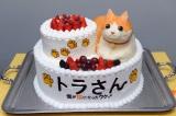 """特製""""トラ猫""""ケーキ"""