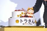巨大な猫が飾られたトラ猫ケーキ =映画『トラさん〜僕が猫になったワケ〜』トラ泣き感謝!御礼舞台あいさつ (C)ORICON NewS inc.(C)ORICON NewS inc.