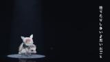 小学6年生のウクレレ奏者・ 近藤利樹と俳優・石丸幹二による新曲「ハリハリハリネズミ」のキュートすぎるMV