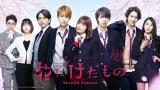 dTV×FOD共同製作ドラマ『花にけだもの〜SecondSeason〜』(3月23日スタート)メインビジュアル(C)エイベックス通信放送/フジテレビジョン