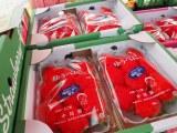 特産品のイチゴがいっぱい=2月24日に開催された『第42回金栗四三のふるさと玉名 横島いちごマラソン大会』の模様 (C)ORICON NewS inc.
