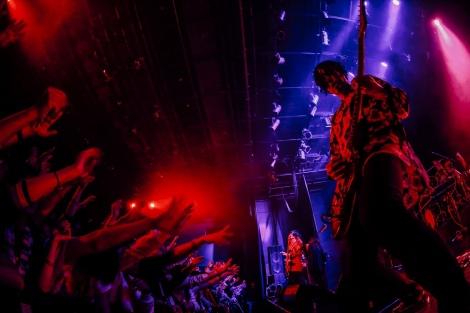 3月1日に大阪・心斎橋 BIGCATでスタートした全国ツアー『ヒトリエ TOUR 2019