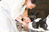 なつ(広瀬すず)は地元の農業高校に通いながら、酪農の仕事を手伝っていた =連続テレビ小説『なつぞら』第3週「なつよ、これが青春だ」より(C)NHK
