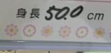 上地雄輔が第2子誕生を報告(画像は本人ブログより・所属事務所の許諾済み)