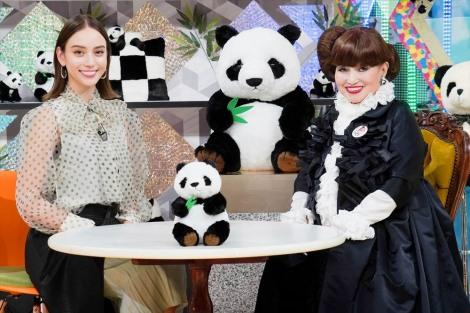 5月7日放送、『滝沢カレンのわかるまで教えてください』(テレビ東京ほか)黒柳徹子からパンダについて学ぶ(C)テレビ東京