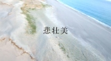 楽曲のスケール感を表現するため砂丘で撮影