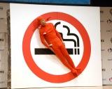 """相方・西村瑞樹のため""""禁煙マーク""""に扮した小峠英二=『スマート・ライフ・プロジェクト2019』の第一弾 世界禁煙デー記念イベント (C)ORICON NewS inc."""