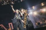 熱量の高いライブで魅了したヒゲダン(左から)藤原聡(Vo/Pf)、楢崎誠(B/Sax) Photo by TAKAHIRO TAKINAMI
