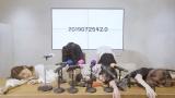 "URA-KiSS、""活動休止""を発表"